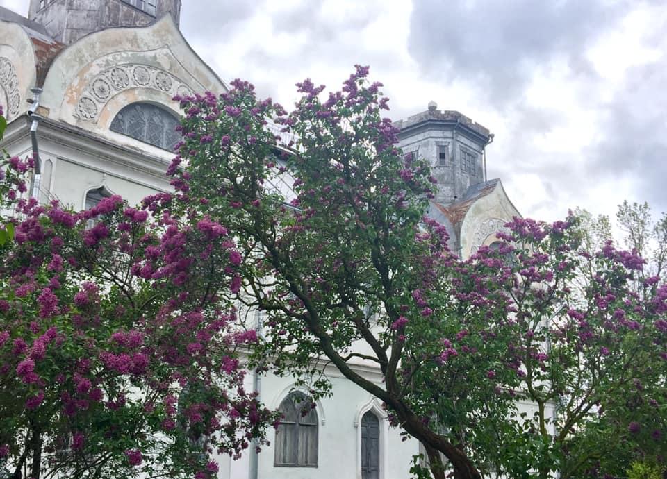 Palace. Photo by Maryna Zagorodnyuk