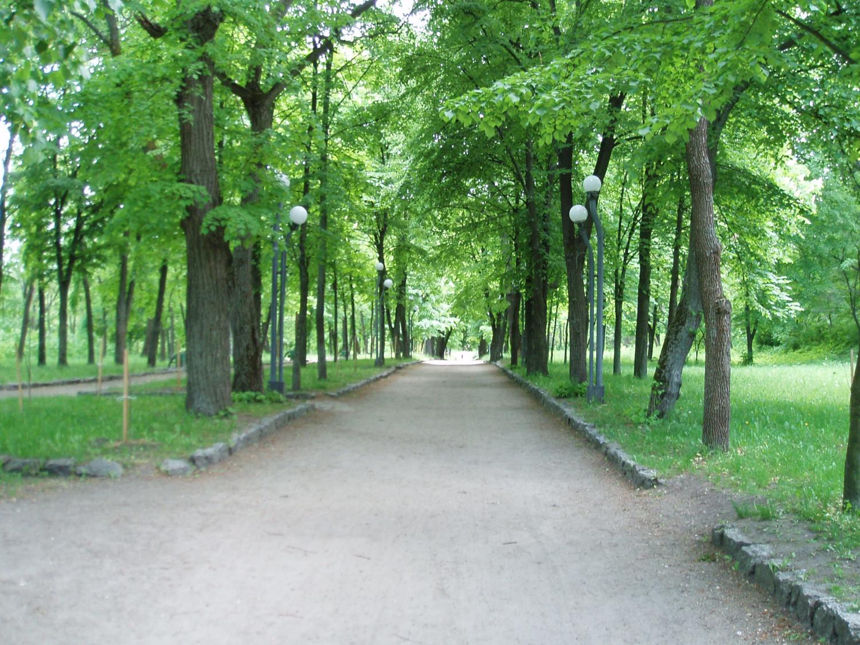Центральна алея парку. Світлина Вадима Усика.