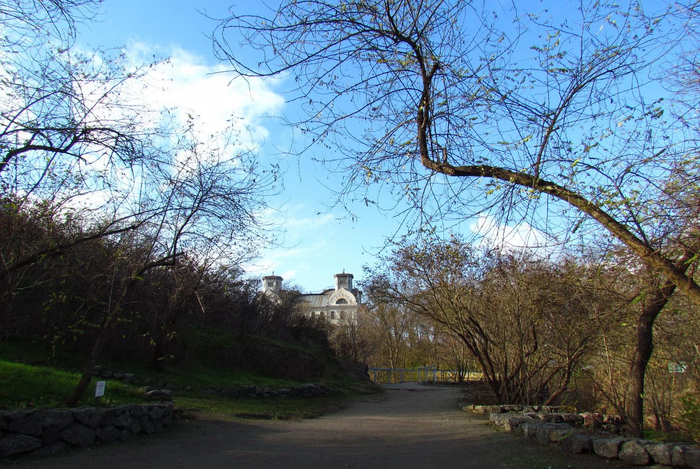 Вид на палац з ландшафтного парку. Світлина Ірини Коваленко